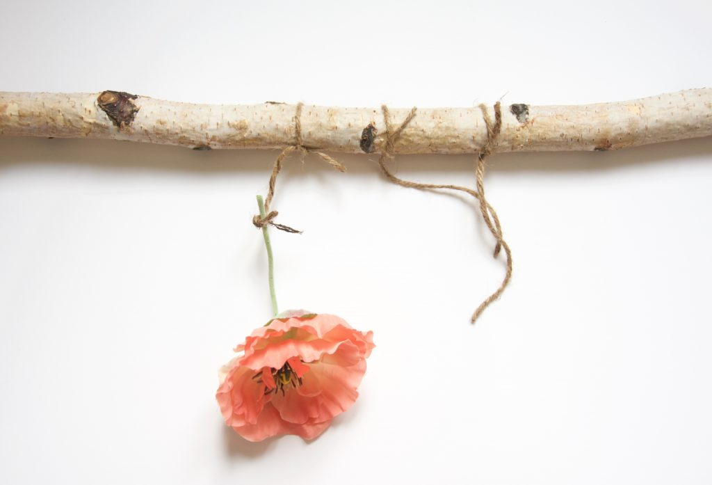 DIY floral wall hanging Tie a flower or piece of greenery to the part of twine that hangs down