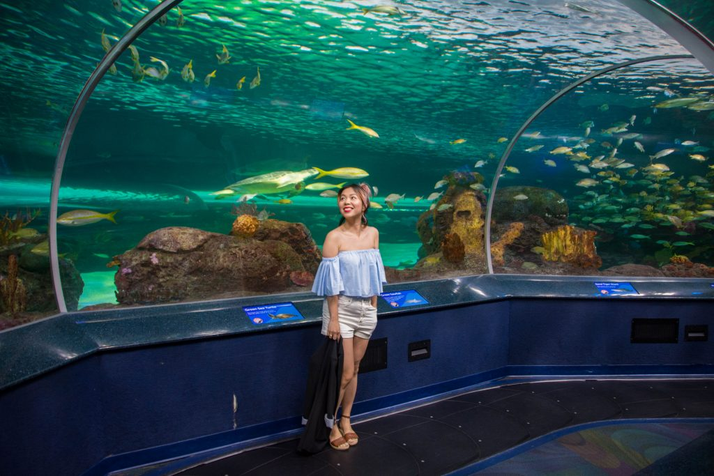 Ripley's Aquarium of Canada underwater tunnel Toronto travel Montreal lifestyle beauty fashion blog