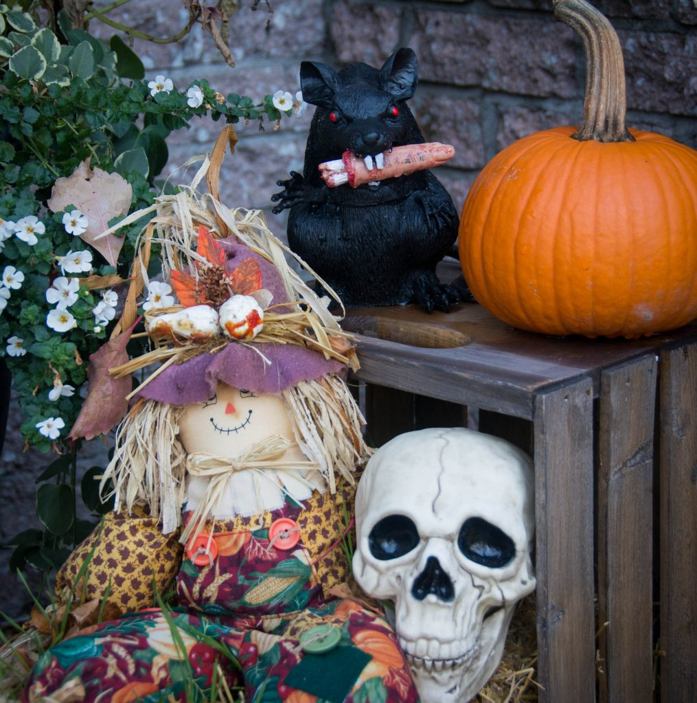 skull rat eating finger outdoor Halloween decor Montreal lifestyle blog