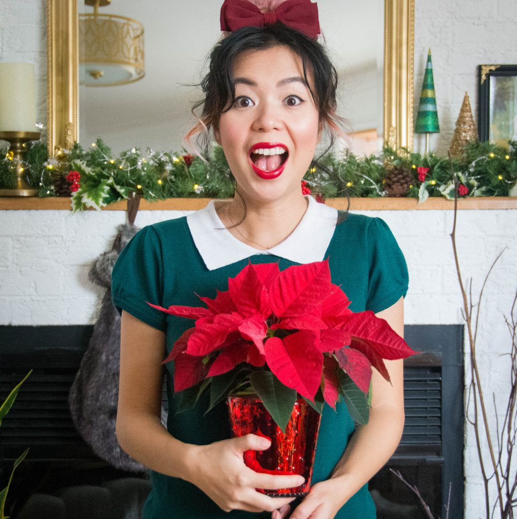 host hostess poinsettia last minute Christmas holiday gift guide Montreal lifestyle beauty fashion blog