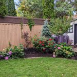 after-backyard-landscape-garden-bed-makeover-Montreal-lifestyle-fashion-beauty-blog